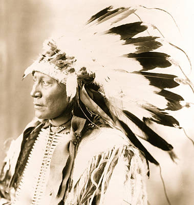 Hollow Photograph - Chief Hollow Horn Bear by American School