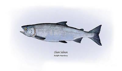 Salmon Drawing - Chum Salmon by Ralph Martens