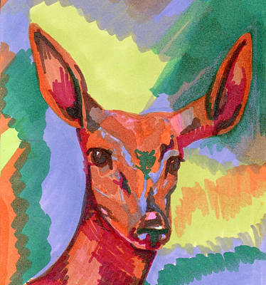 Raspberry Drawing - Color-a-doe by Krista Payne