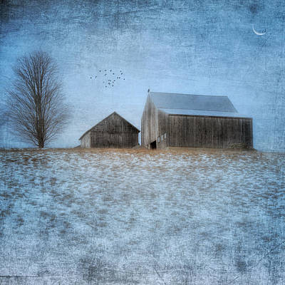 Winter Landscape Photograph - Coming Home To Roost by Bill Wakeley