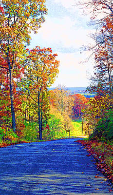 Country Road In Indiana Image Print by Paul Price