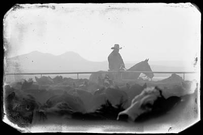 Black Angus Photograph - Cowboy Dawn by Todd Klassy