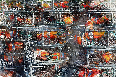 Meshed Photograph - Crab Pots by Brandon Bourdages