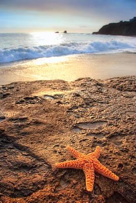 Crescent Bay Laguna Beach California Print by Utah Images