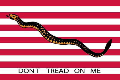 Snake Drawing - Don't Tread On Me by American School