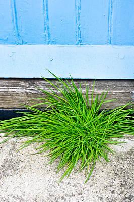 Ledge Photograph - Door Step by Tom Gowanlock