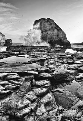 Ocean Vista Photograph - Dramatic View Of Shark Fin Cove by Jamie Pham