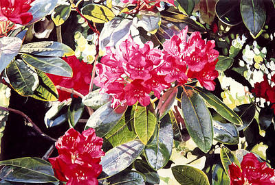 Rhododendron Painting - Dreaming Of April by David Lloyd Glover