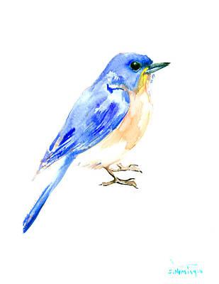Bluebird Drawing - Eastern Bluebird by Suren Nersisyan