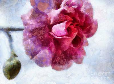Pink Carnation Photograph - Endless Love by Krissy Katsimbras