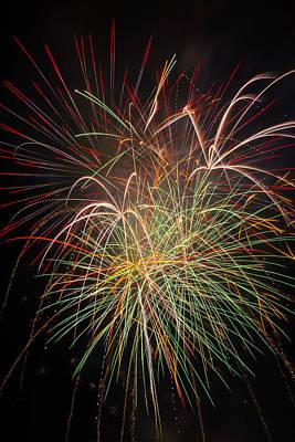 Fantastic Fireworks Print by Garry Gay
