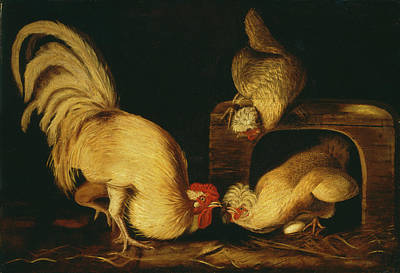 Painting - Farmyard Fowls by John James Audubon