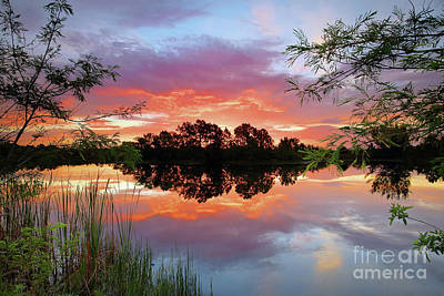 Photograph - Fire In The Sky by Rick Mann
