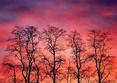 Fire In The Sky Print by Todd Klassy