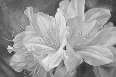 Rhododendron Painting - Fleurs Blanches - Black And White by Lucie Bilodeau