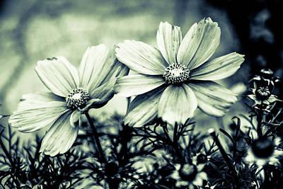 Blooming Digital Art - Flowers by Toppart Sweden