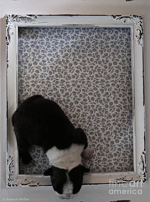 Framed Print by Susan Herber