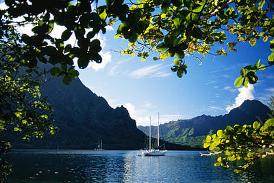 Moorea Photograph - French Polynesia, Moorea by Dana Edmunds - Printscapes
