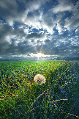 Unity Photograph - Good Day Sunshine by Phil Koch