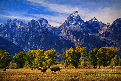 Great Falls Of Yellowstone Digital Art - Grand Teton National Park Bison by Priscilla Burgers