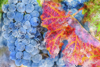 Grow Digital Art - Grapes On The Vine In The Autumn Season by Brandon Bourdages
