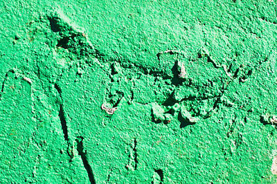 Green Background Print by Tom Gowanlock