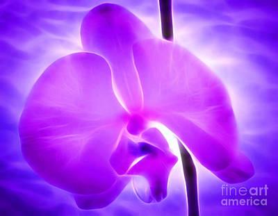 Zen Digital Art - Healing Light by Krissy Katsimbras