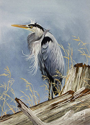 Gouache Painting - Herons Windswept Shore by James Williamson