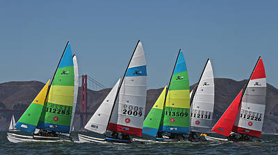 Sausalito Photograph - Hobie Cat Regatta San Francisco by Steven Lapkin