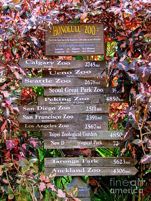 Photograph - Honolulu Zoo Sign by Mary Deal