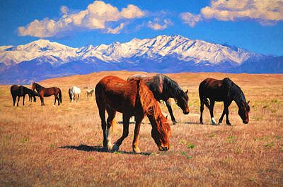 Horses Photograph - Horses On The Plain by Greg Norrell