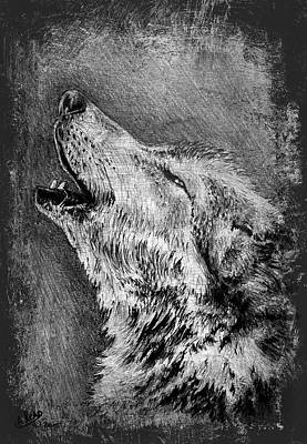 Wolf Drawing - Howling Wolf by Andrew Read