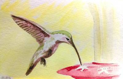 Hummingbird Print by Stacy C Bottoms