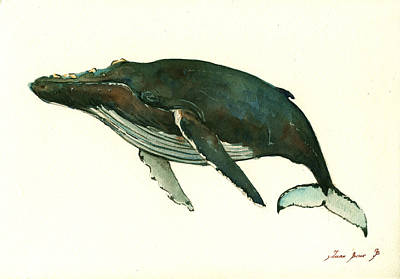 Whale Painting - Humpback Whale  by Juan  Bosco