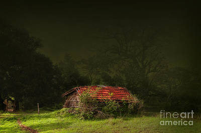Red Roof Photograph - Hut by Charuhas Images