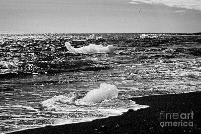 Icebergs Washing Up On Black Sand Beach At Jokulsarlon Iceland Print by Joe Fox