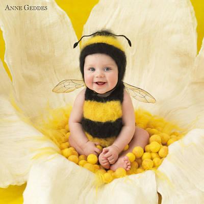Flowers Photograph - Jai by Anne Geddes