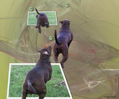 Chocolate Labrador Retriever Digital Art - Keep Your Eye On The Ball by Roger Wedegis