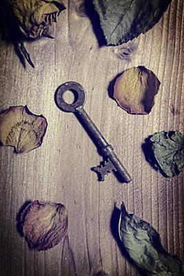 Dried Photograph - key by Joana Kruse