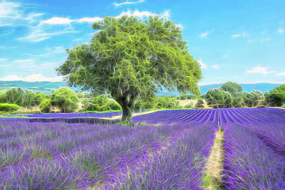 Landscap Painting - Lavender Bloom by Christian Heeb