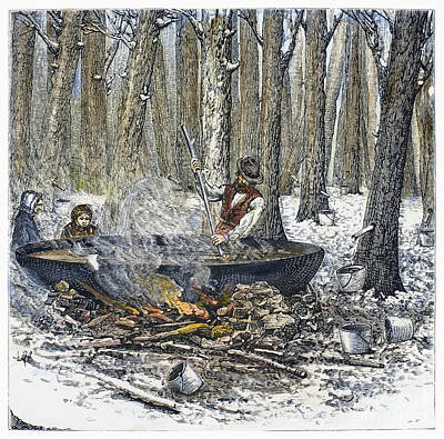 Maple Syrup, 1877 Print by Granger