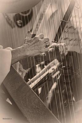 Music Photograph - Michigan Renaissance Festival Harp Strings by LeeAnn McLaneGoetz McLaneGoetzStudioLLCcom