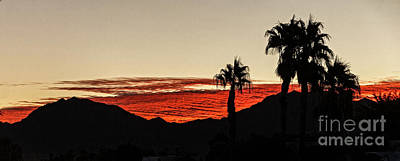 Sunset View Print by Robert Bales