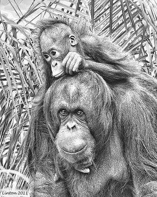 Orangutan Digital Art - Mother And Daughter by Larry Linton