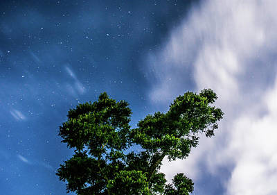 Van Goh Photograph - Movement In The Skies by Shelby Young