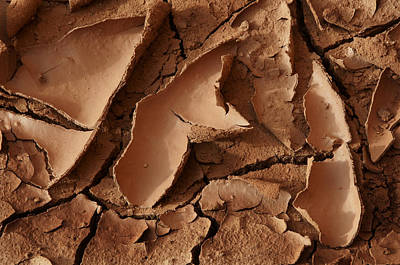 Plexiglas Photograph - Mv Cracked Mud 7413 by Bob Neiman