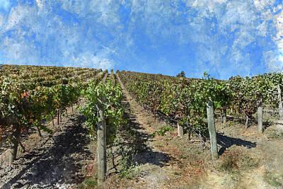 Napa Valley Photograph - Napa Valley California Vineyard by Brandon Bourdages