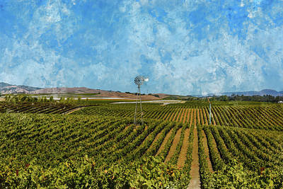 Wine Photograph - Napa Valley Vineyard In California by Brandon Bourdages