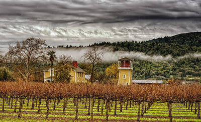 Napa Valley Vineyard On A Cloudy Day Print by Mountain Dreams