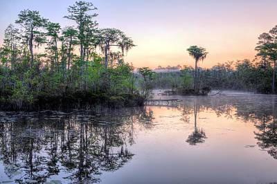 Natural Florida Print by JC Findley